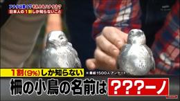 テレビ朝日「ハナタカ!優越館」で紹介されました。